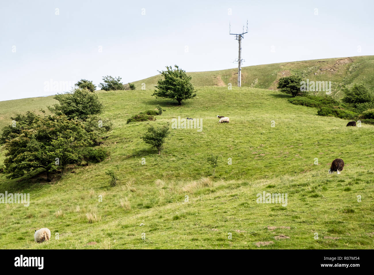 Self supporting telecommunications mast in the countryside, Vale of Edale, Derbyshire, England, UK - Stock Image