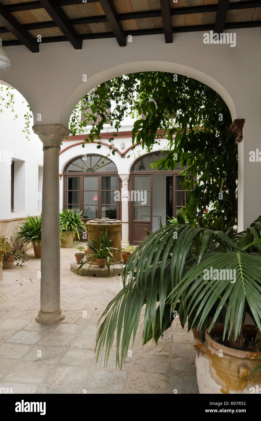 Potted plants in Mediterranean courtyard - Stock Image