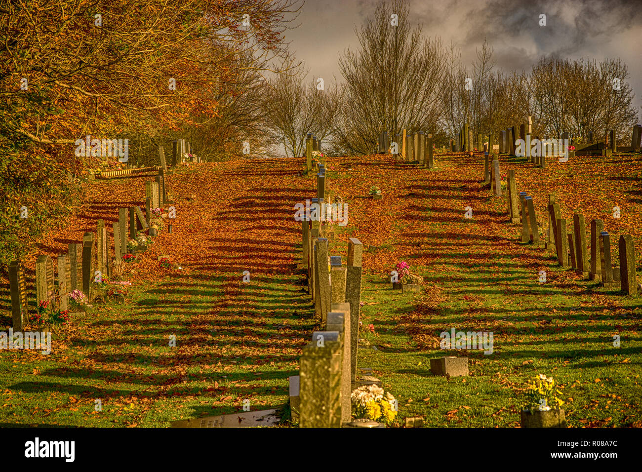 Forever Autumn. An autumnal image taken at a cemetery with the early morning sun casting long shadows. - Stock Image