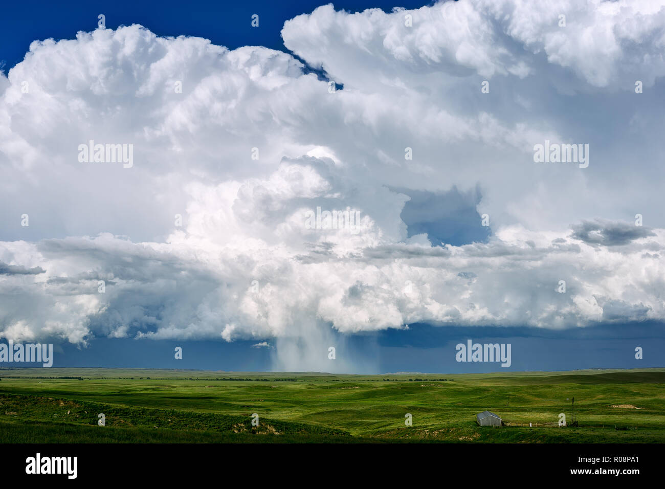 Cumulonimbus thunderstorm clouds over a green, grass landscape near Newcastle, Wyoming, USA. - Stock Image