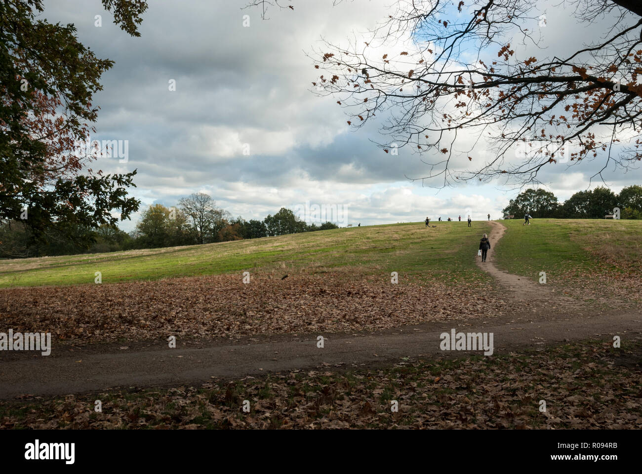 Autumn colours with leaves on the ground. A sunny day with clouds on Parliament Hill, Hampstead heath. - Stock Image