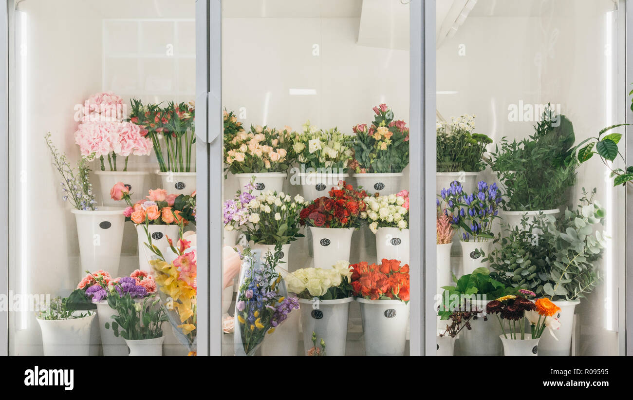 Flower shop concept. Different varieties fresh spring flowers in refrigerator room for flowers. Bouquets on shelf florist business. - Stock Image