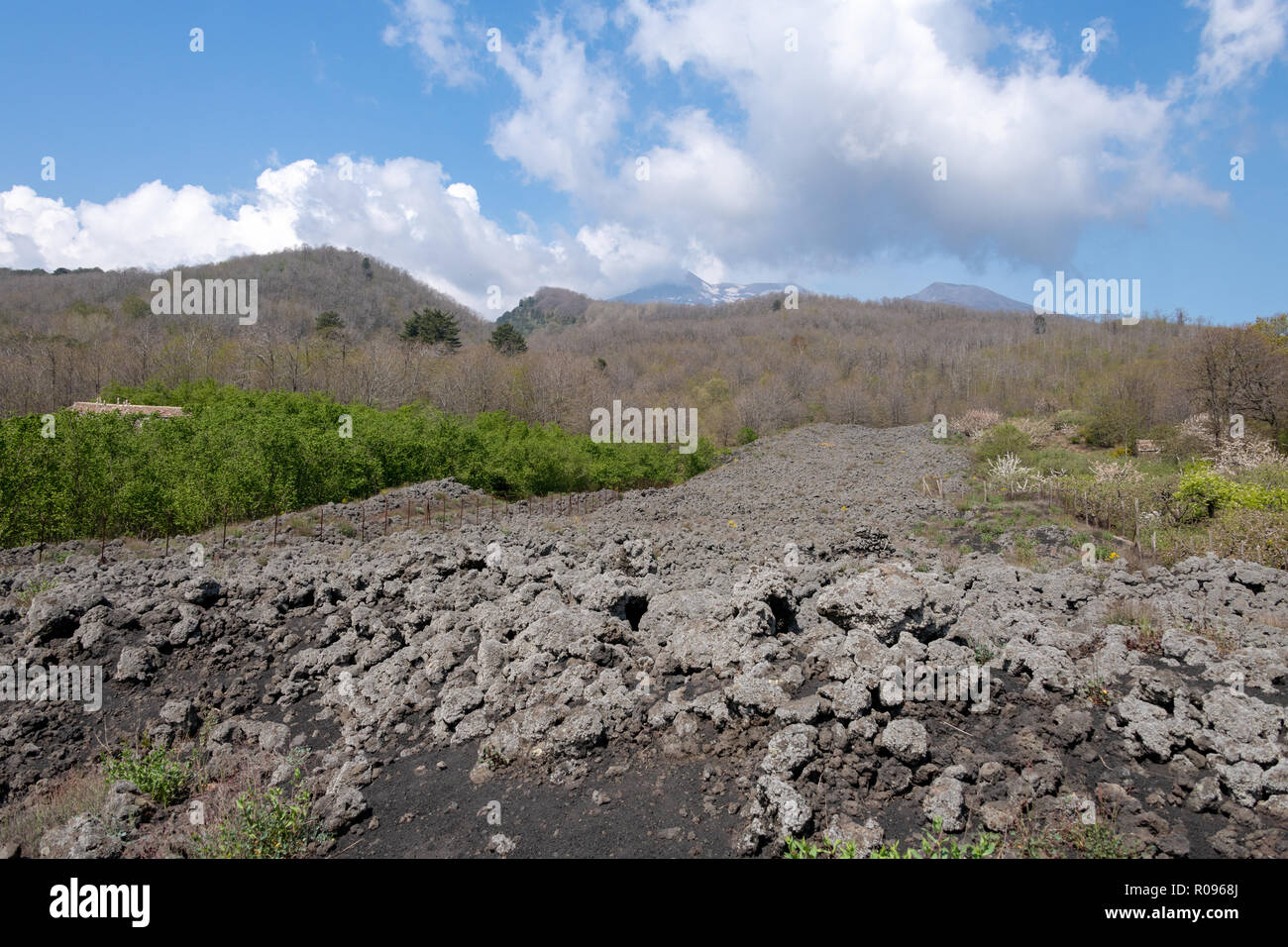 Black Lava Field from Mt Etna, Sicily - Stock Image