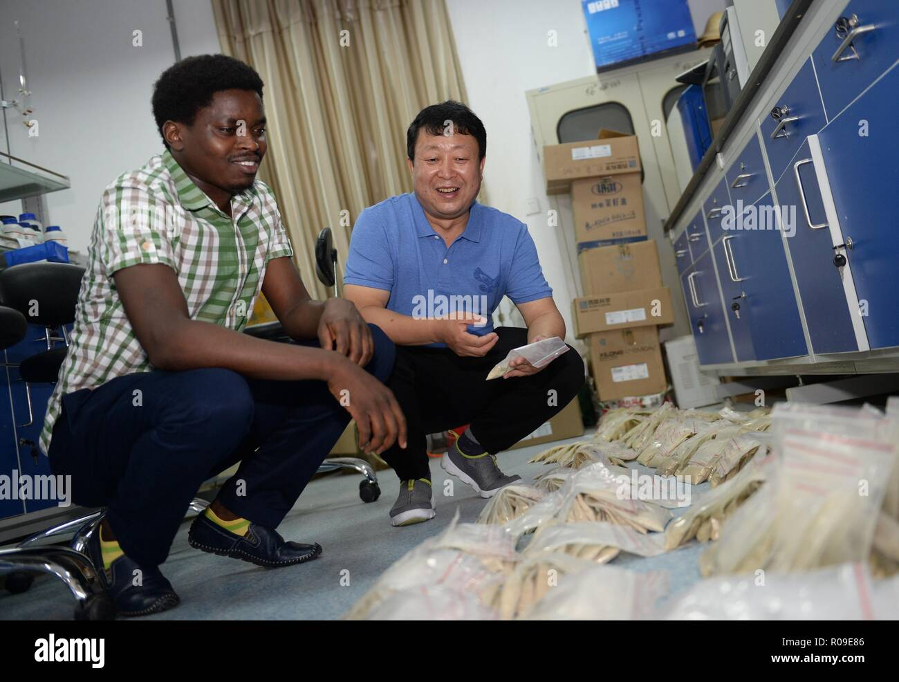 Xi'an, China's Shaanxi Province. 3rd Sep, 2018. Rwandan student Efienne Niyigabas (L) receives assignment from Hai Jiangbo, an associate professor with Northwest Agriculture and Forestry University, at a laborotary of the College of Agronomy in the university in Yangling, northwest China's Shaanxi Province, Sept. 3, 2018. Credit: Li Yibo/Xinhua/Alamy Live News - Stock Image