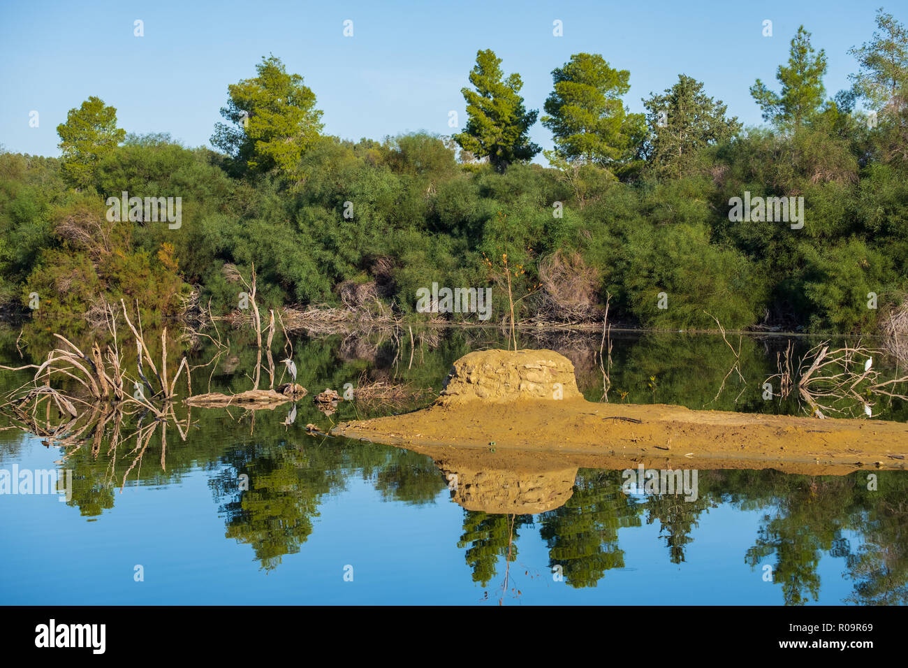 Panoramic view of Athalassa Lake in Cyprus with beautiful reflections of the sky, trees and birds on a beautiful sunny morning Stock Photo