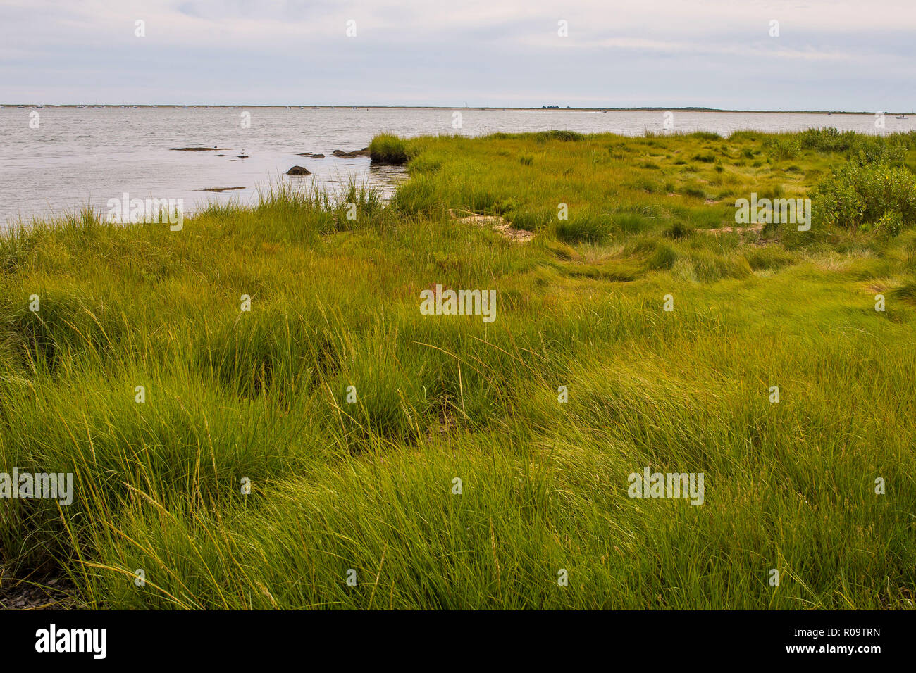 Contains, 11,000 Acres on Narragansett Bay on CT and RI State Borders. Nesting habitat for birds and other wildlife. Great spot for families. - Stock Image
