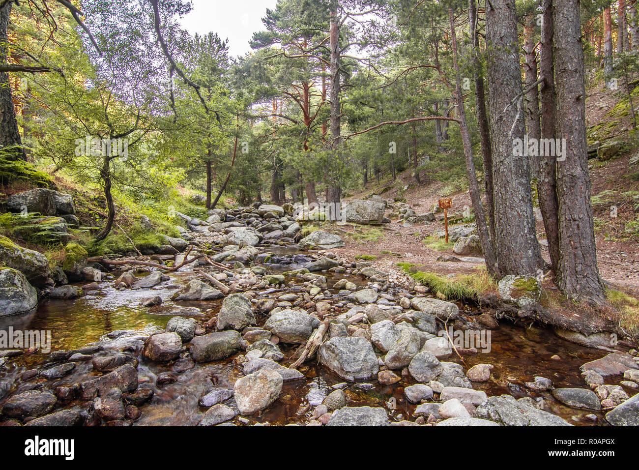 Mountain stream in a place called La Barranca in the sierra de guadarrama. Madrid Spain Stock Photo