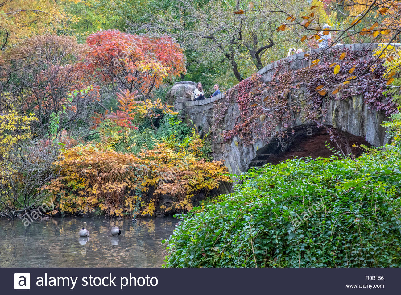 Gapstow Bridge with fall foliage, NYC, USA taken 2018 - Stock Image