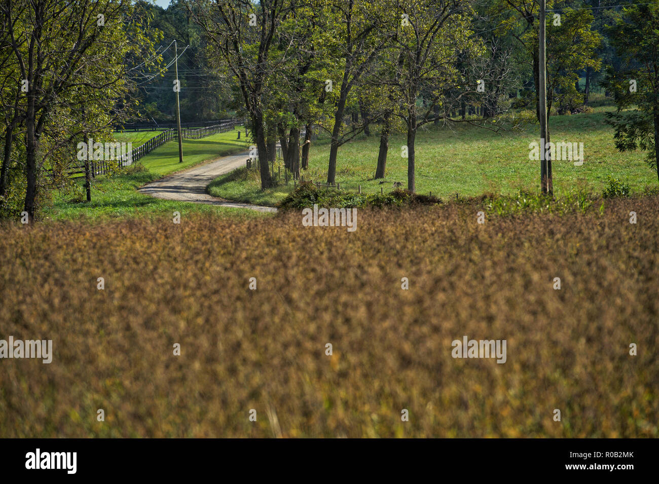UNITED STATES - June 4, 2017: Western Loudoun's historic dirt road known as Trappe Road outside of the Village of Bloomfield. Many of the dirt roads i - Stock Image