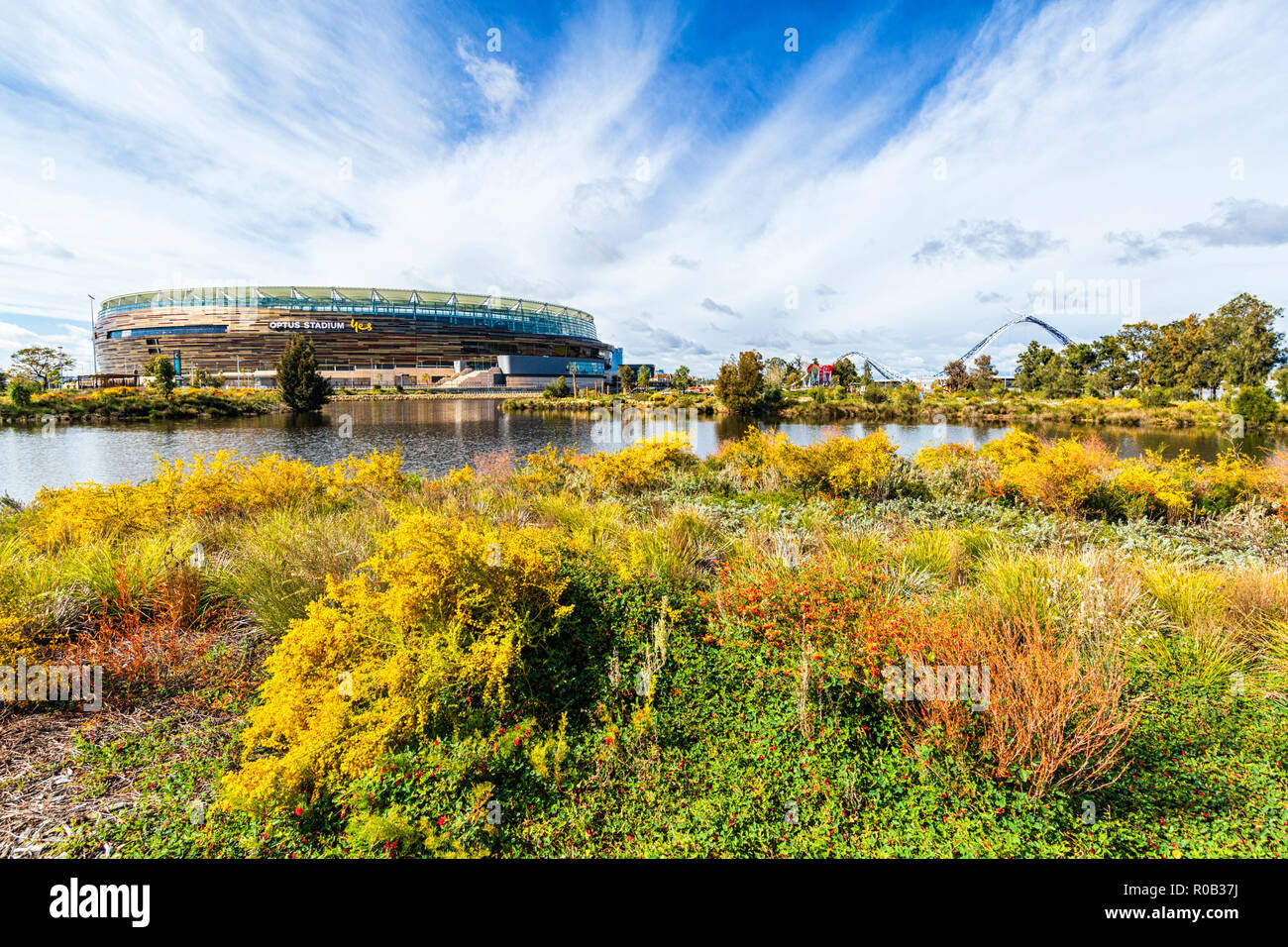 Chevron Parkland and Stadium Park with a lake and native plants next to Optus Stadium in Burswood. Stock Photo