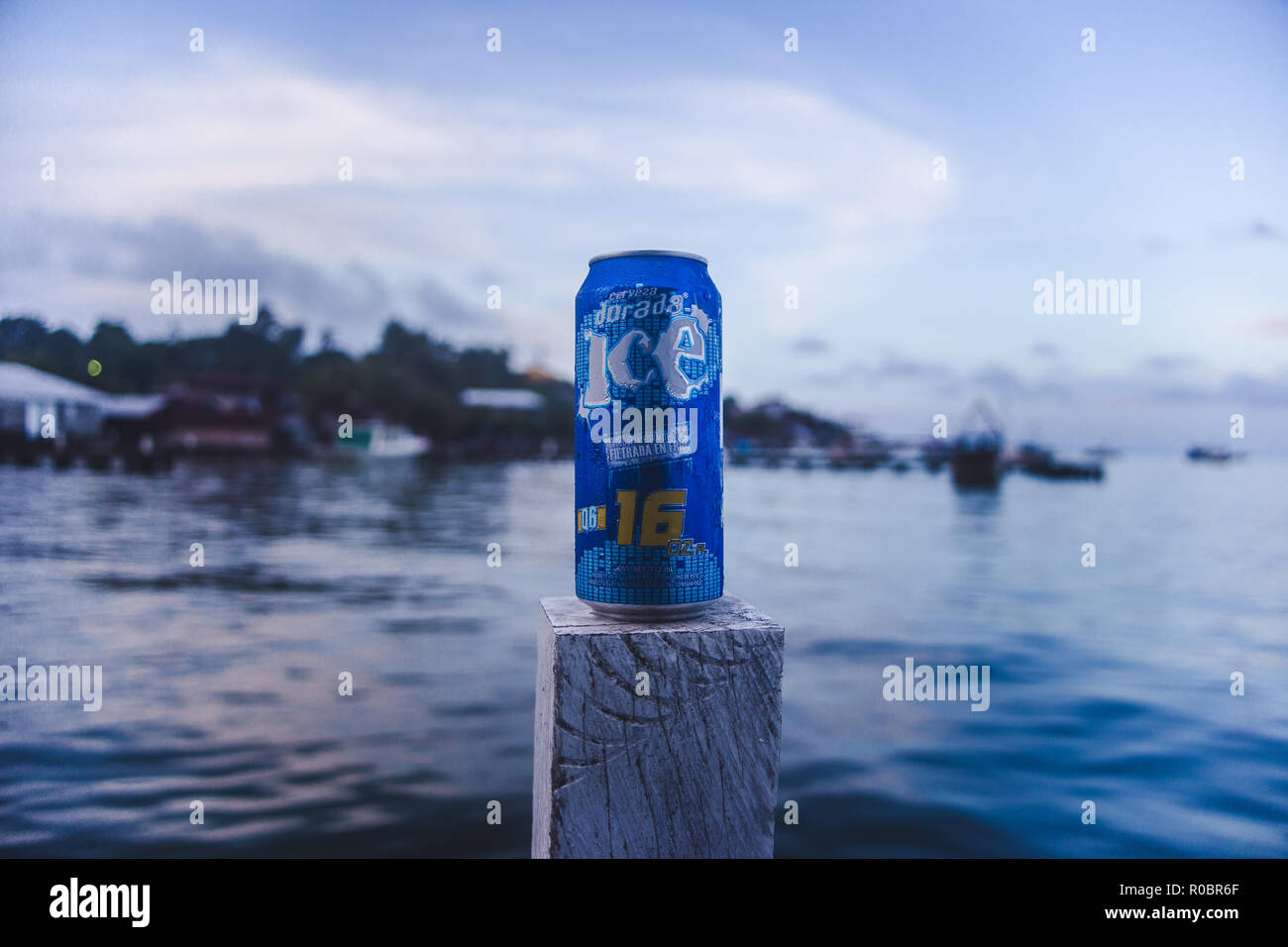 Blue drinks can of Guatemalan beer Dorada Ice being drunk on a jetty in Livingston, on the east coast of Guatemala - Stock Image