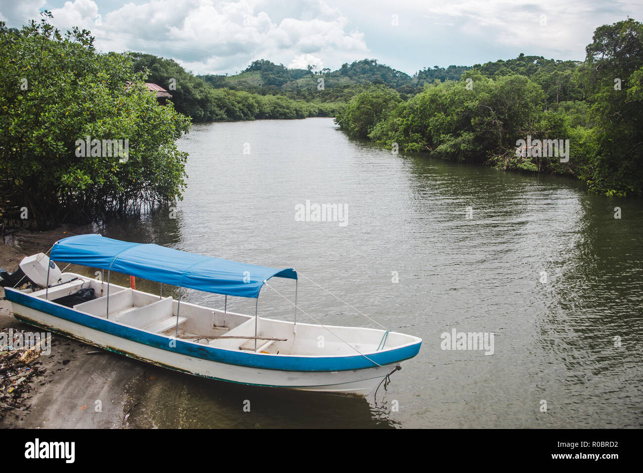 Blue and white motorized river boat on the lush green banks of the peaceful Quehueche river in Lívingston, east Guatemala - Stock Image