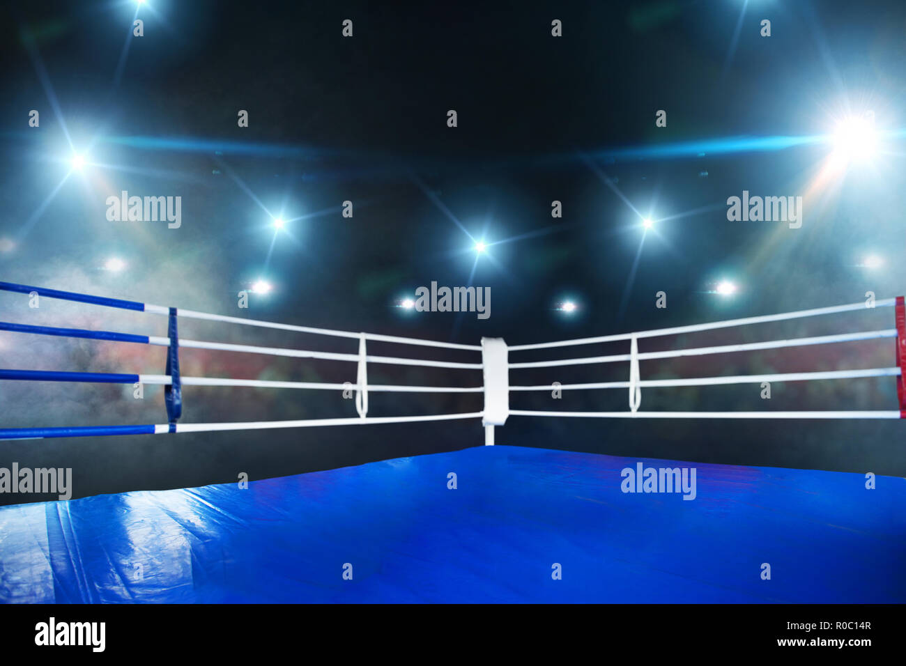 Empty boxing ring, blue flooring, view on corner with white ropes. Professional arena for sport competitions and fighting tournaments, nobody, bright  - Stock Image
