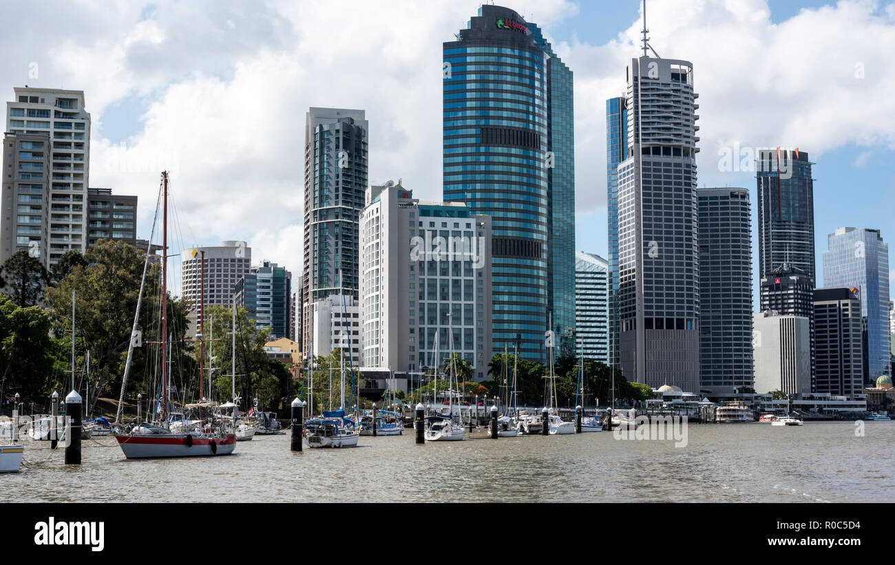 View of Brisbane City, and pile moorings at City Botanical Gardens, Brisbane, Australia. - Stock Image