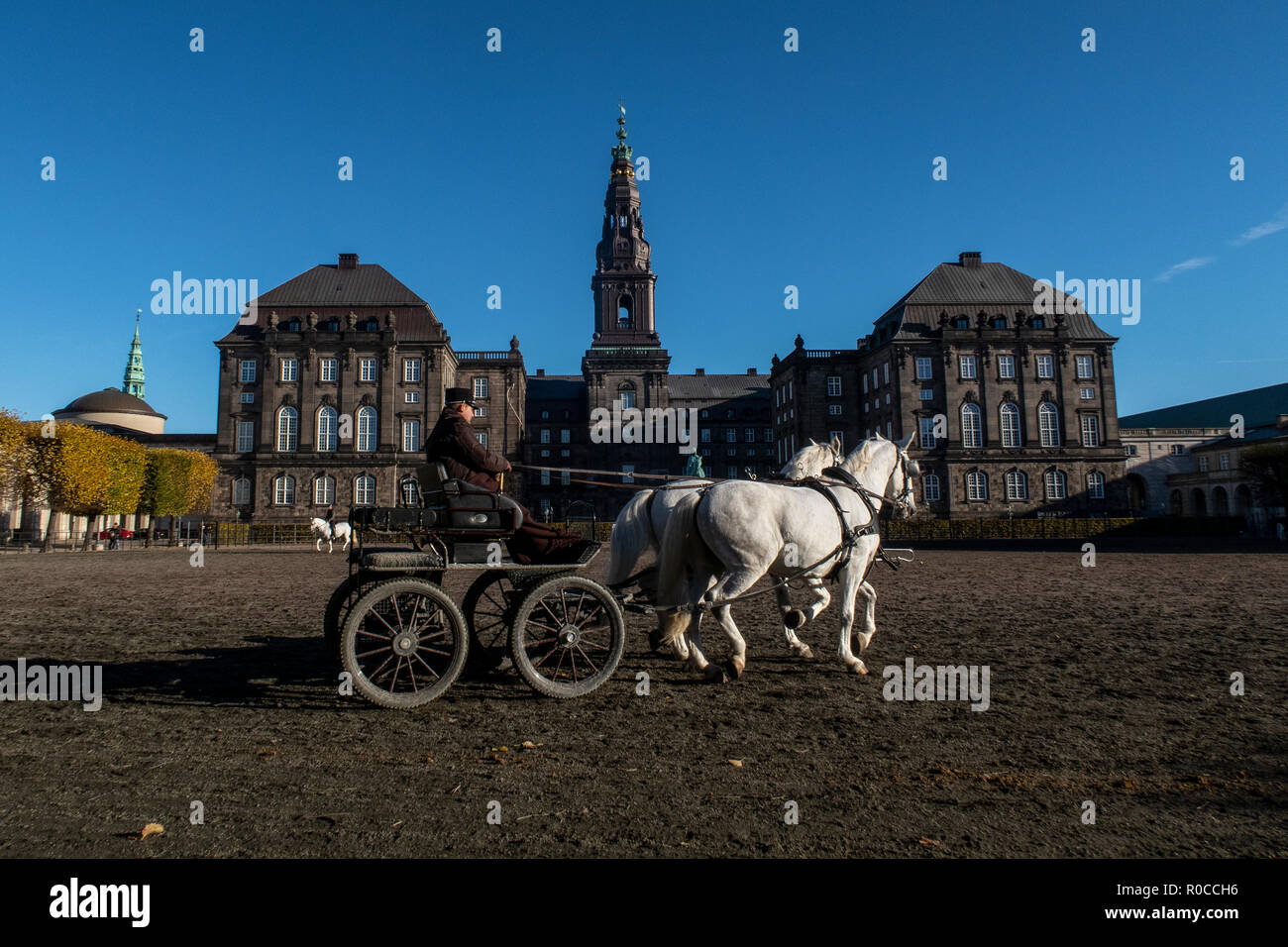 Horses from the Royal Stables on the parade ground of Christiansborg Palace in Copenhagen, Denmark, Danish parliament building. - Stock Image
