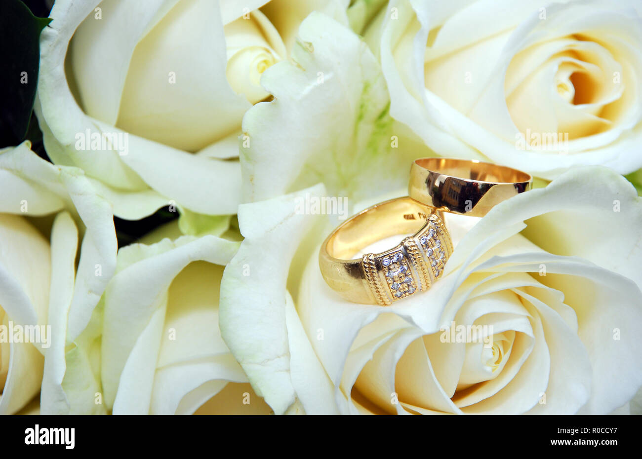 Wedding Rings With Roses: Ivory Roses And Wedding Rings At Reisefeber.org