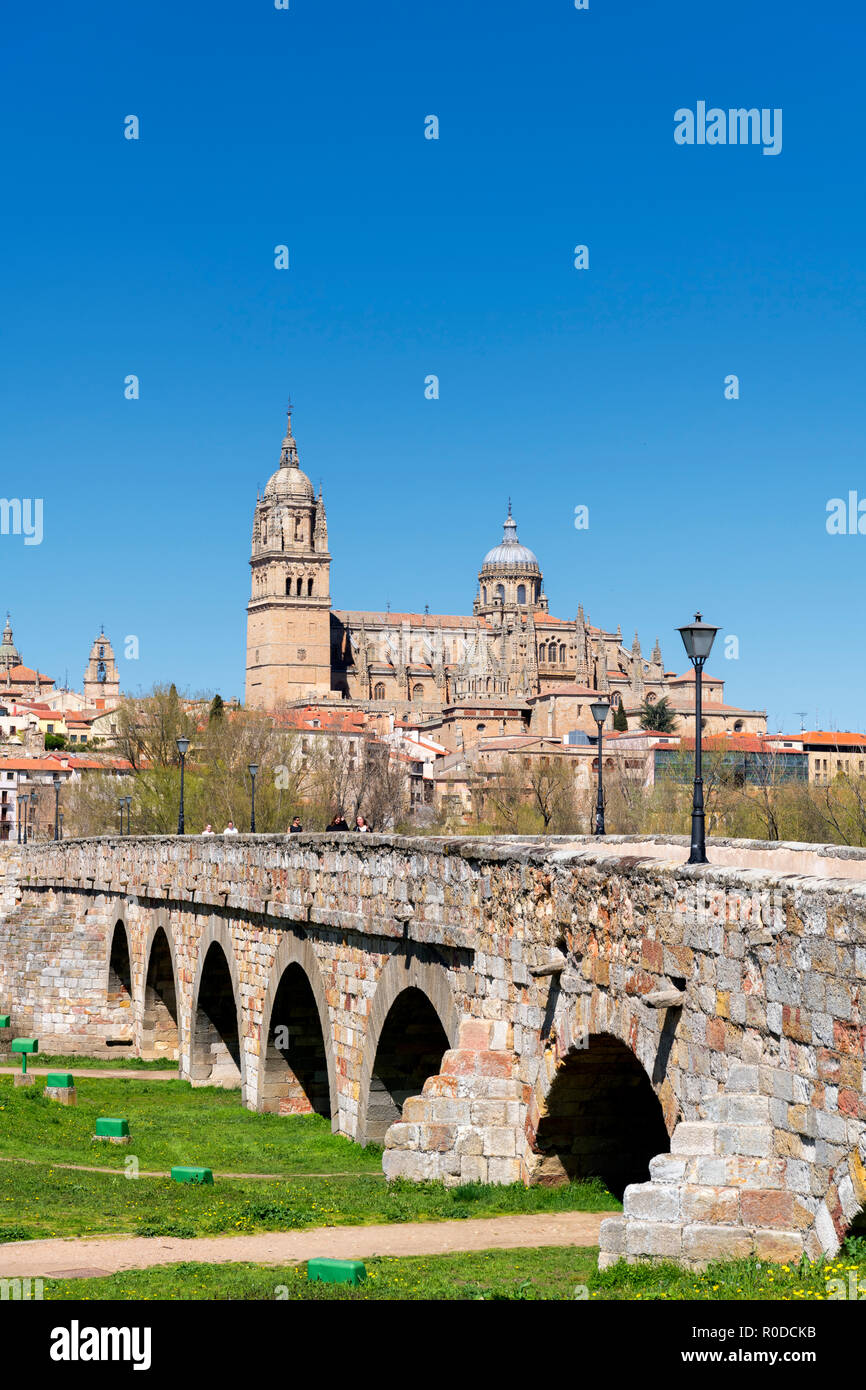 The Puente Romano (Roman Bridge) and view towards the old town and cathedrals, Salamanca, Castilla y Leon, Spain - Stock Image