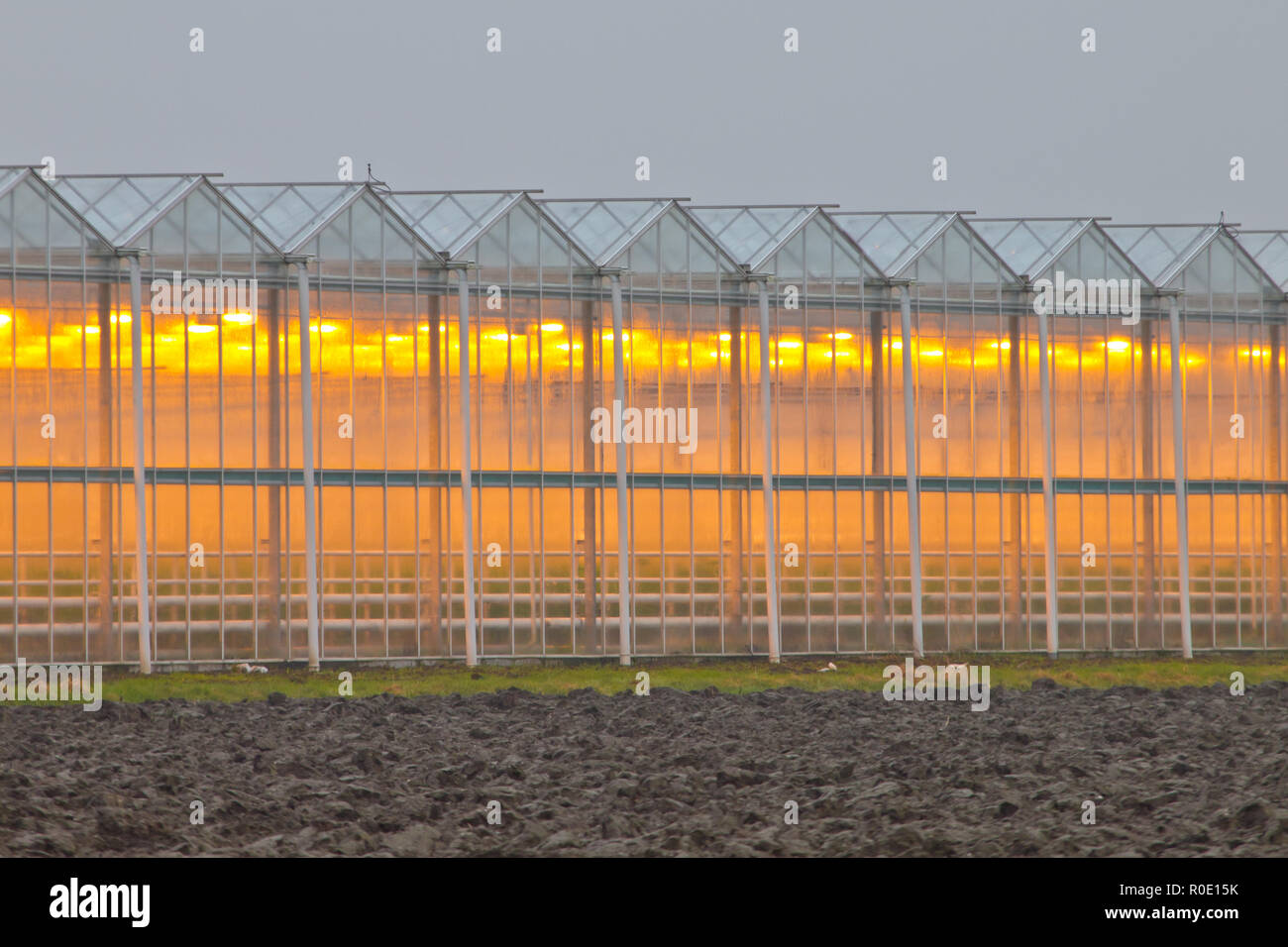 Exterior facade of a commercial greenhouse in the Netherlands - Stock Image