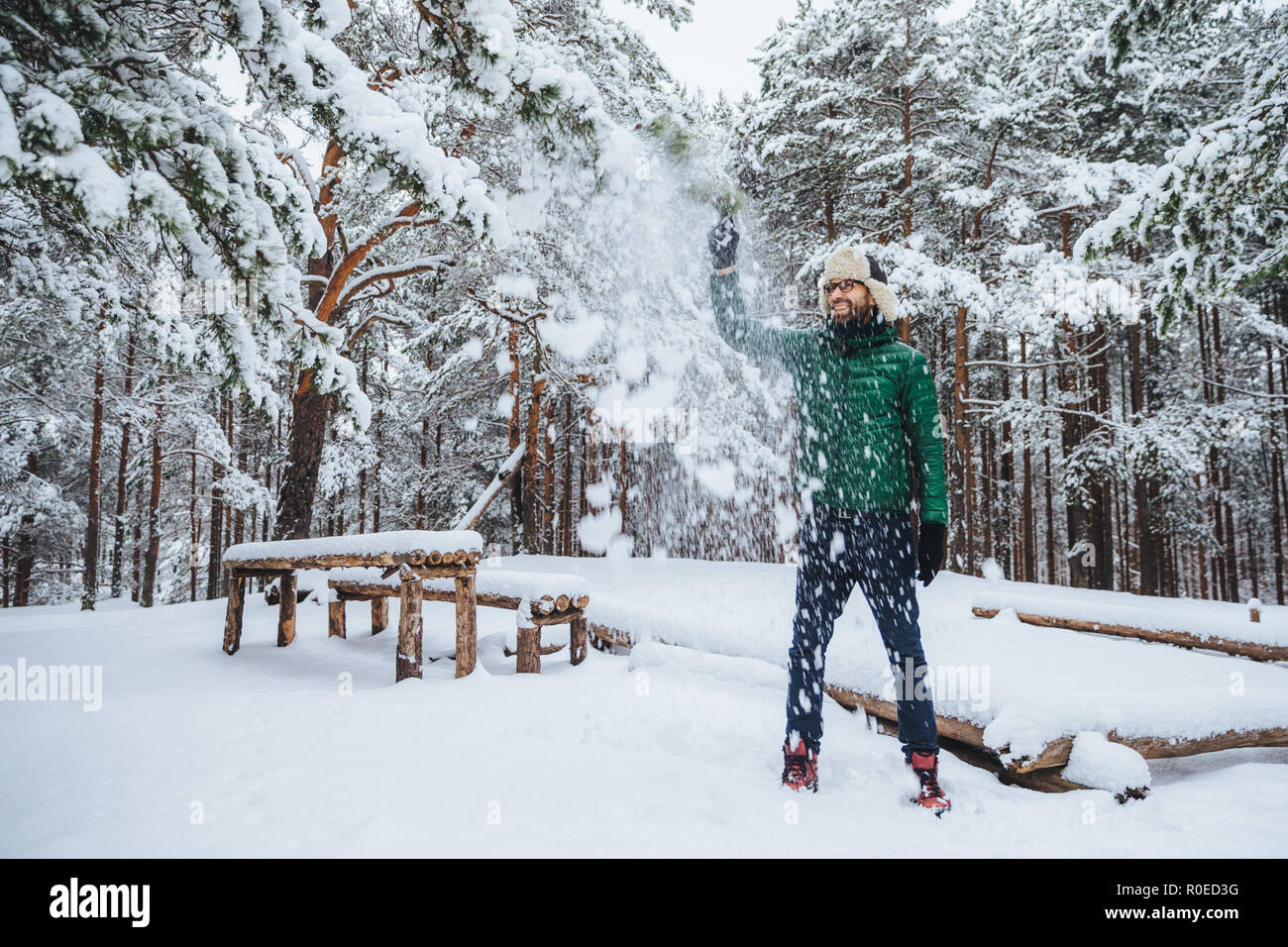 Outdoor shot of handsome bearded male dressed in warm clothes, has fun as throws snow in air, spends holidays in winter forest, expresses positiveness - Stock Image