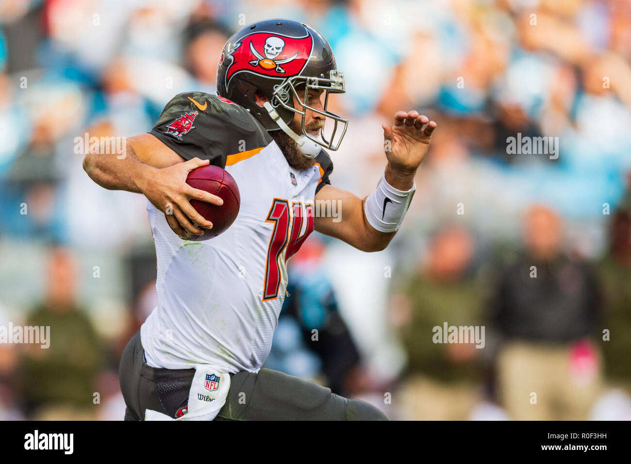 c3004634 Tampa Bay Buccaneers quarterback Ryan Fitzpatrick (14) during the NFL  football game between the Tampa Bay Buccaneers and the Carolina Panthers on  Sunday ...
