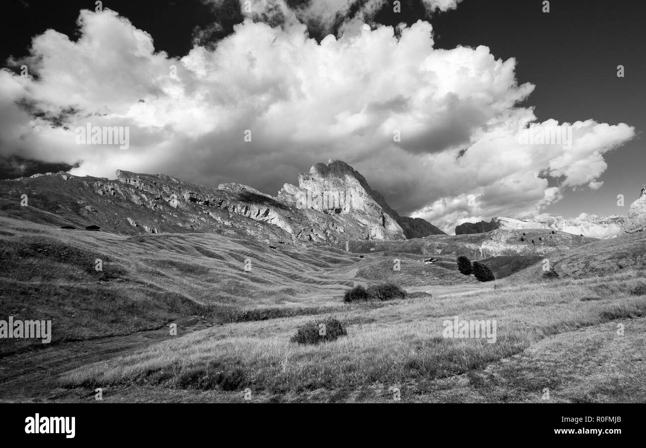 Alpine grasslands of Seceda mountain. Gardena Valley, The Dolomites. - Stock Image