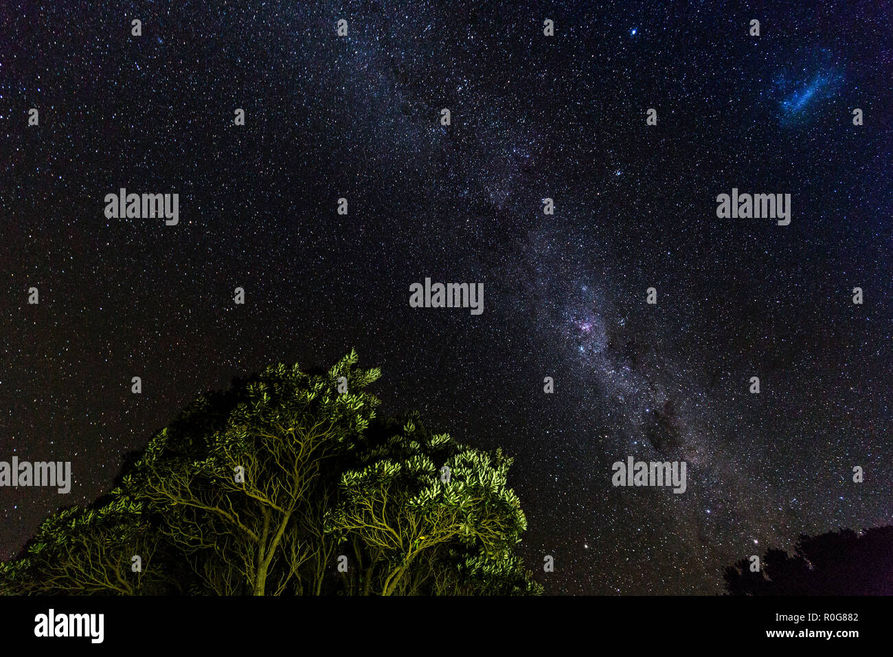 Milky Way in the Southern Hemisphere, New Zealand - Stock Image