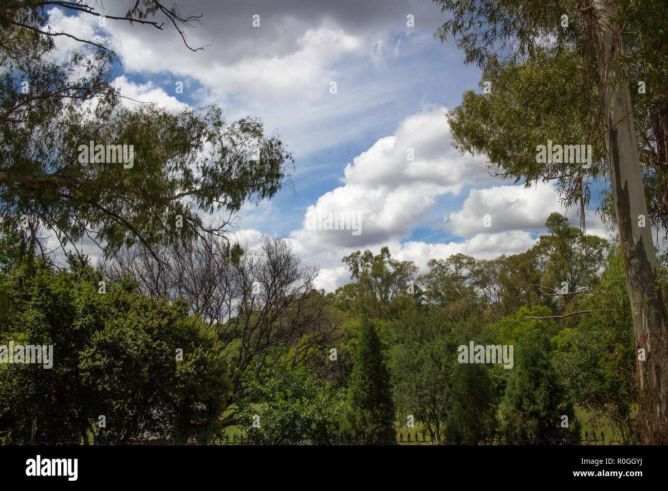 Jan Smuts house in Pretoria, South Africa - Stock Image