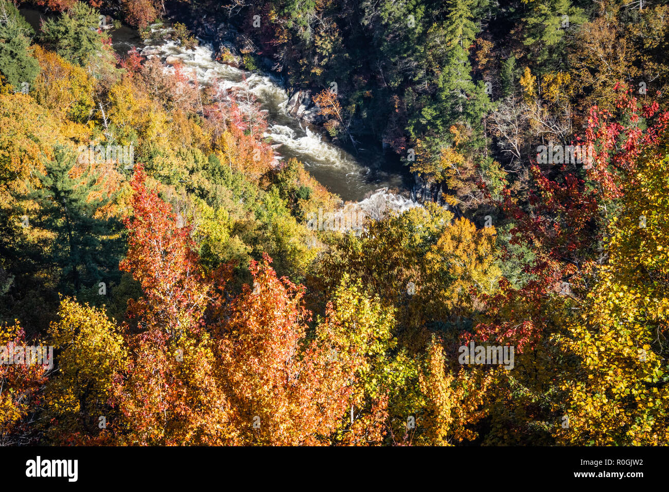 Autumn foliage frames the raging water of the Tallulah River during a whitewater release at Tallulah Gorge State Park in Northeast Georgia. (USA) - Stock Image