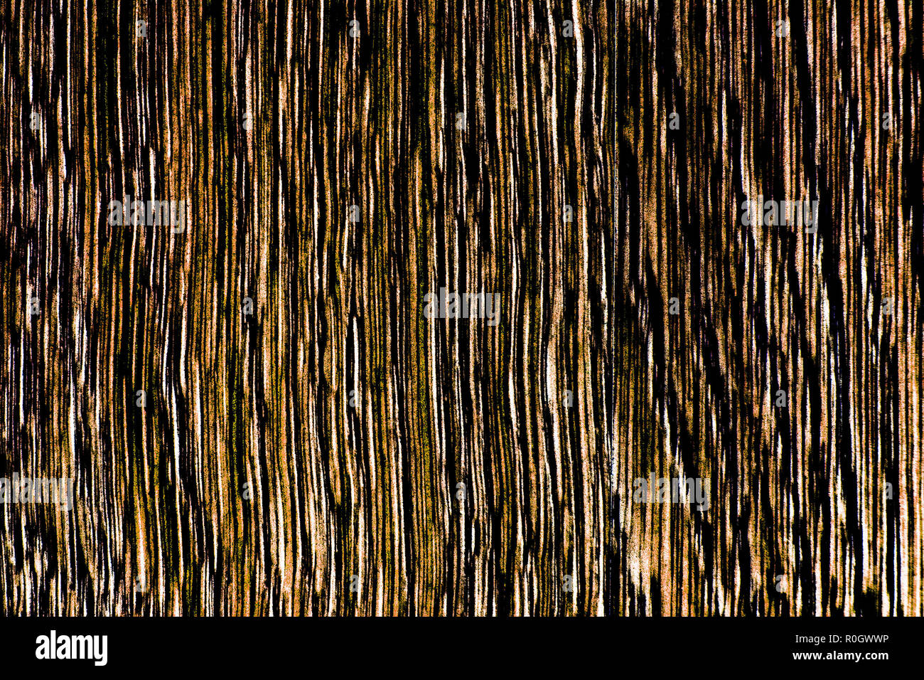 High contrast wooden texture in brown tones, lengthwise cut vertically oriented, HDR toning - Stock Image