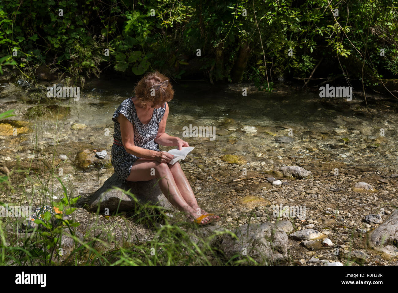 a woman reading a book in the middle of nature - Stock Image