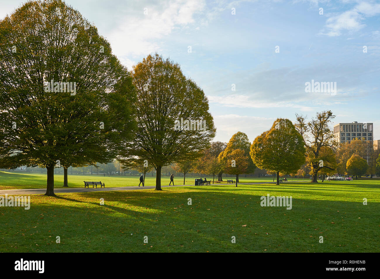 Clissold Park, Stoke Newington, Hackney, London, on a mild sunny afternoon in November 2018 Stock Photo