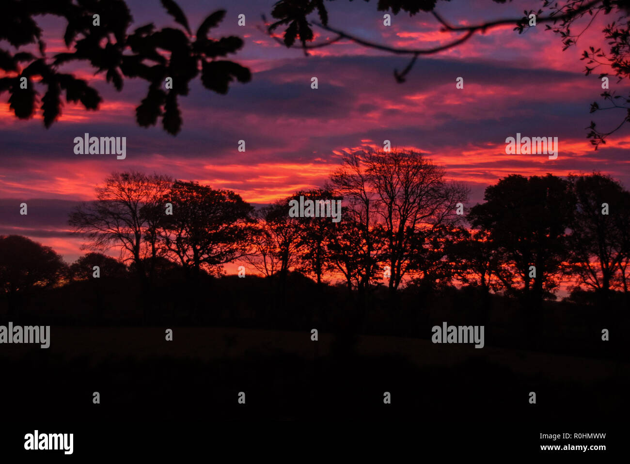 Llwyncelyn, Aberaeron West Wales 5th Nov 2018. UK Weather: Lovely sunrise this morning in Llwyncelyn. Credit: andrew chittock/Alamy Live News - Stock Image
