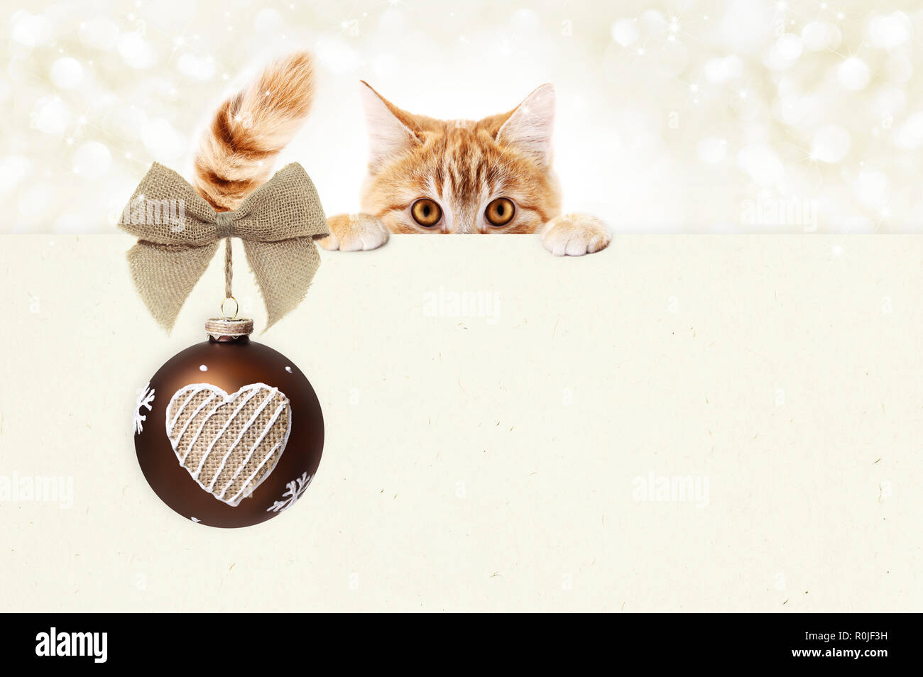 Christmas Ginger Cat Gift Card With Red Ball And Jute Ribbon Bow Copy Space Template