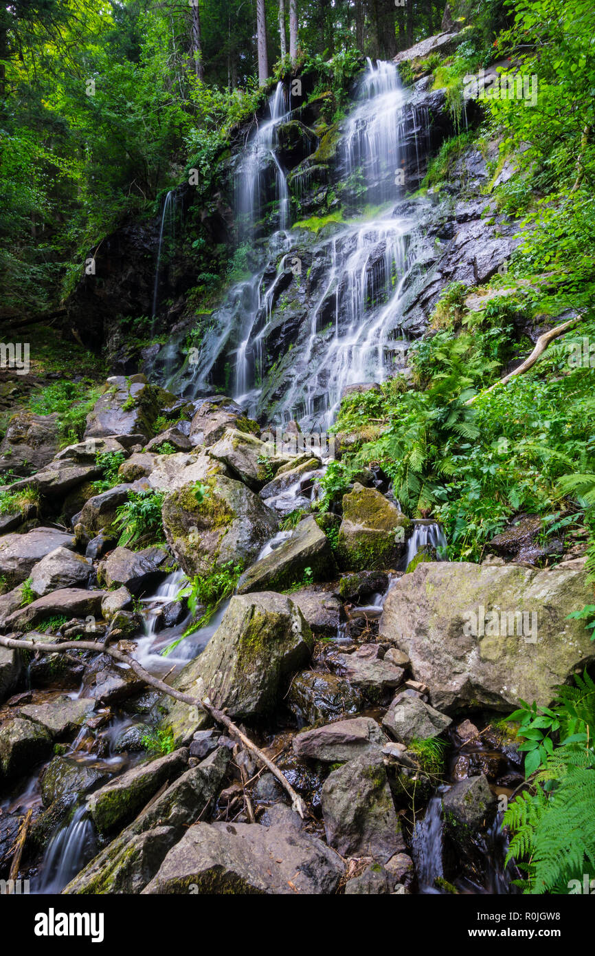 Germany, Black forest destination of Zweribach waterfall in protected forest nature landscape - Stock Image