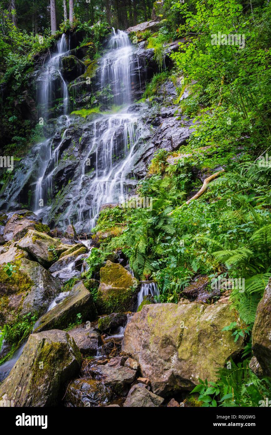 Germany, Zweribach falls of Simonswald near Freiburg in magic avalanche forest - Stock Image