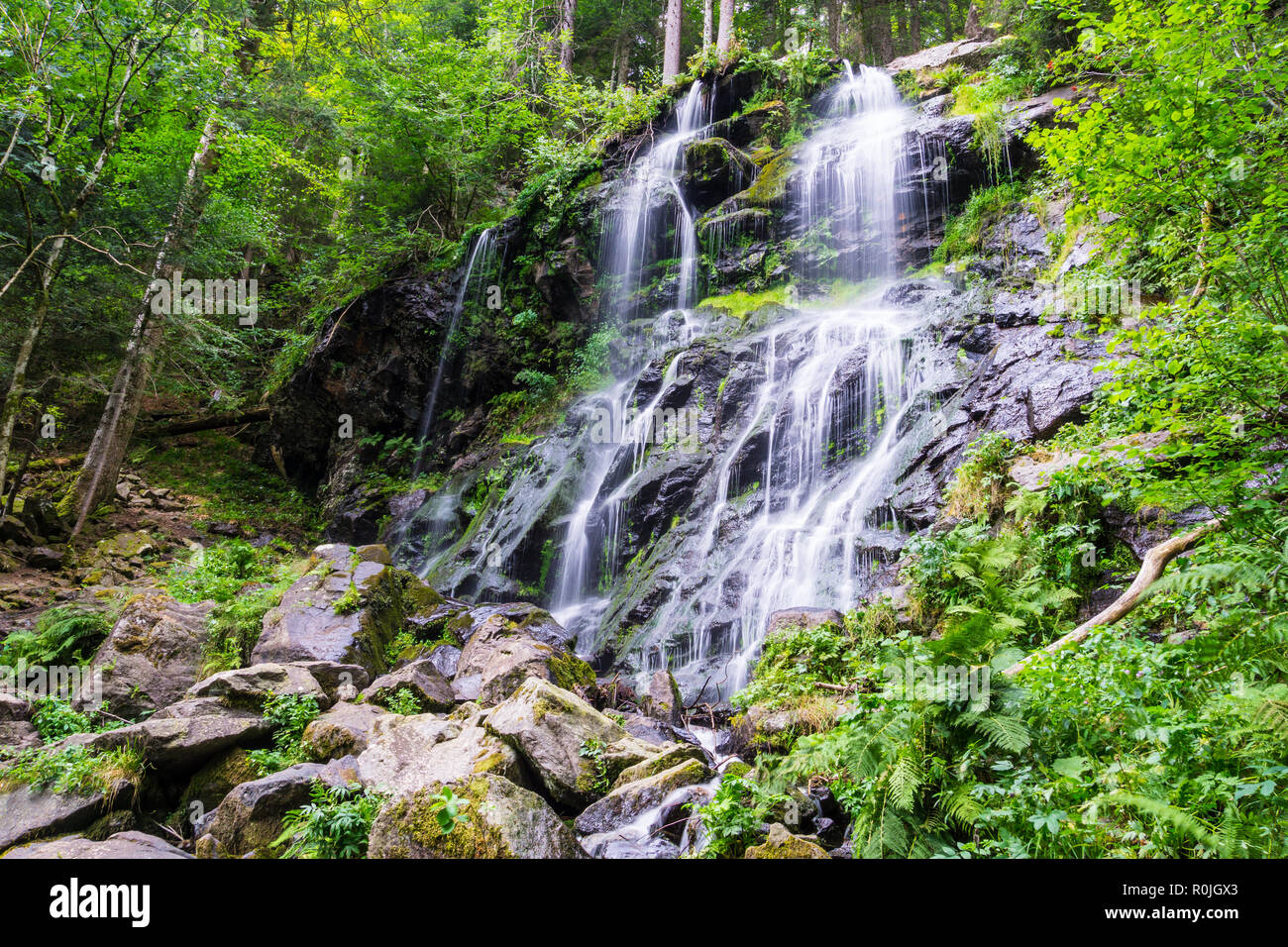 Germany, Rocky waterfall of Zweribach in green magic forest landscape - Stock Image