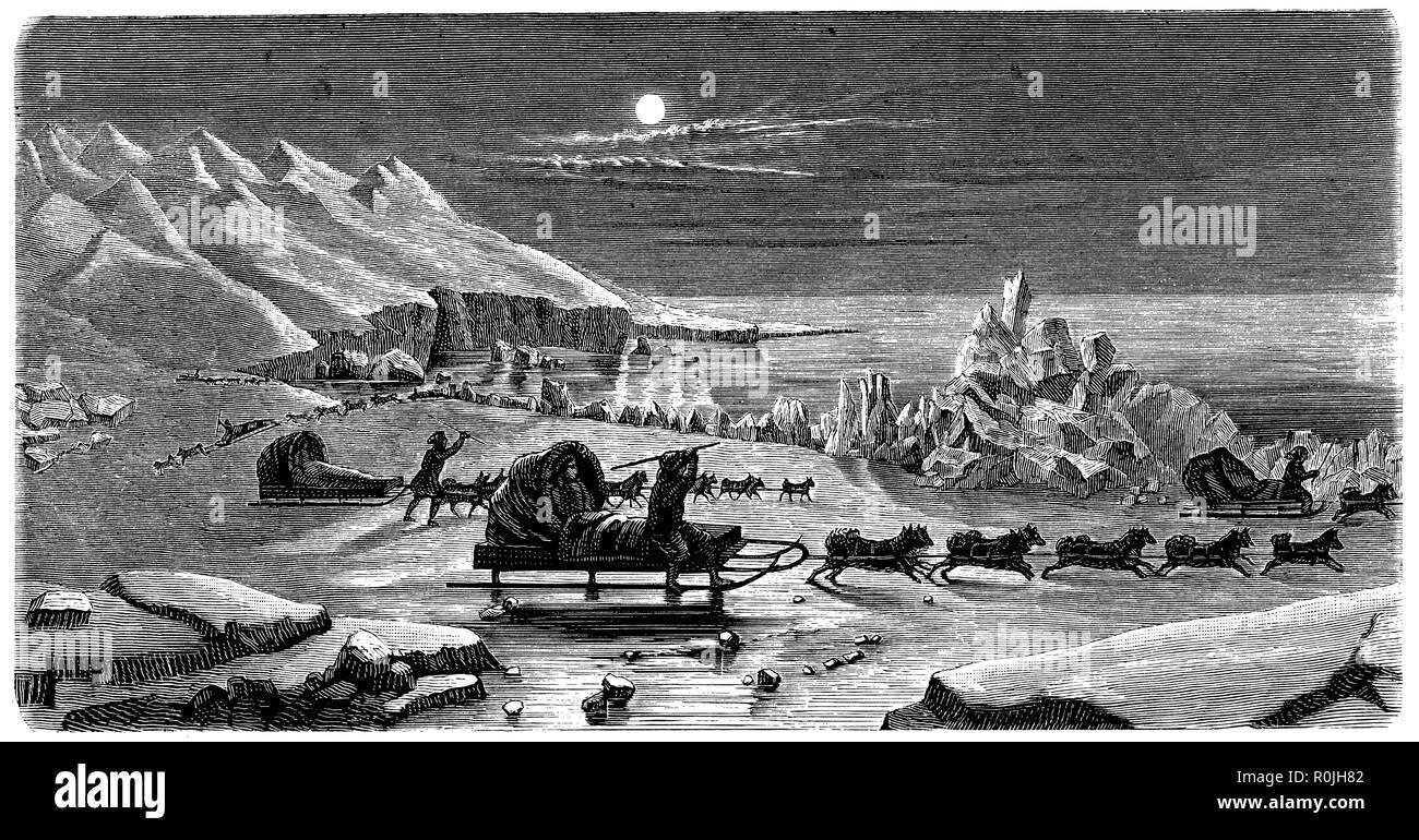 Travel by dog sledges on the Okhotsk Sea, - Stock Image