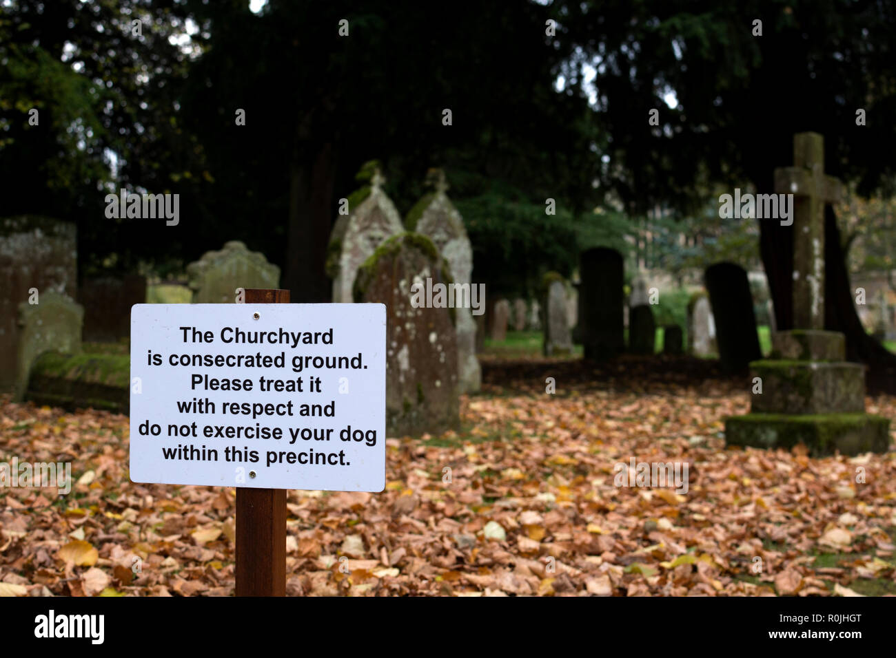 Sign against exercising dogs in Holy Trinity churchyard, Stratford-upon-Avon, Warwickshire, UK - Stock Image
