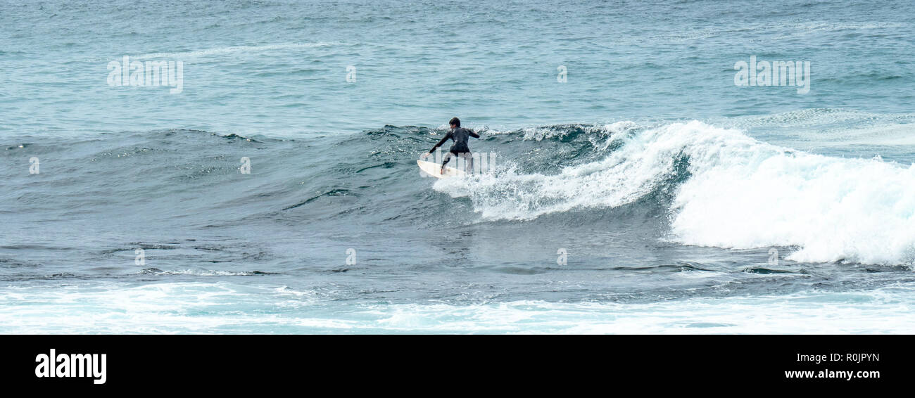 Surfer catching a wave at Bronte Beach Sydney NSW Australia. - Stock Image