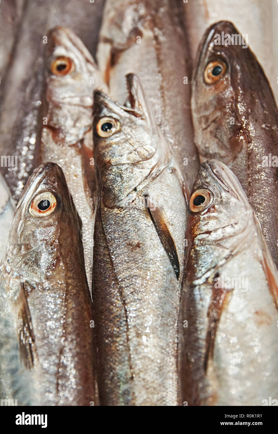 fish in the market - Stock Image