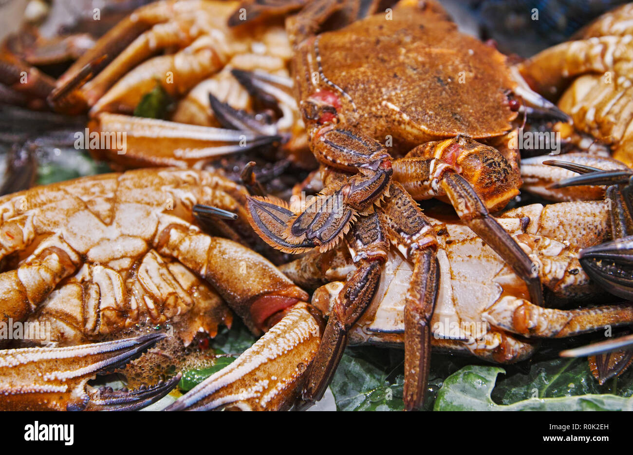 crabs in the market - Stock Image