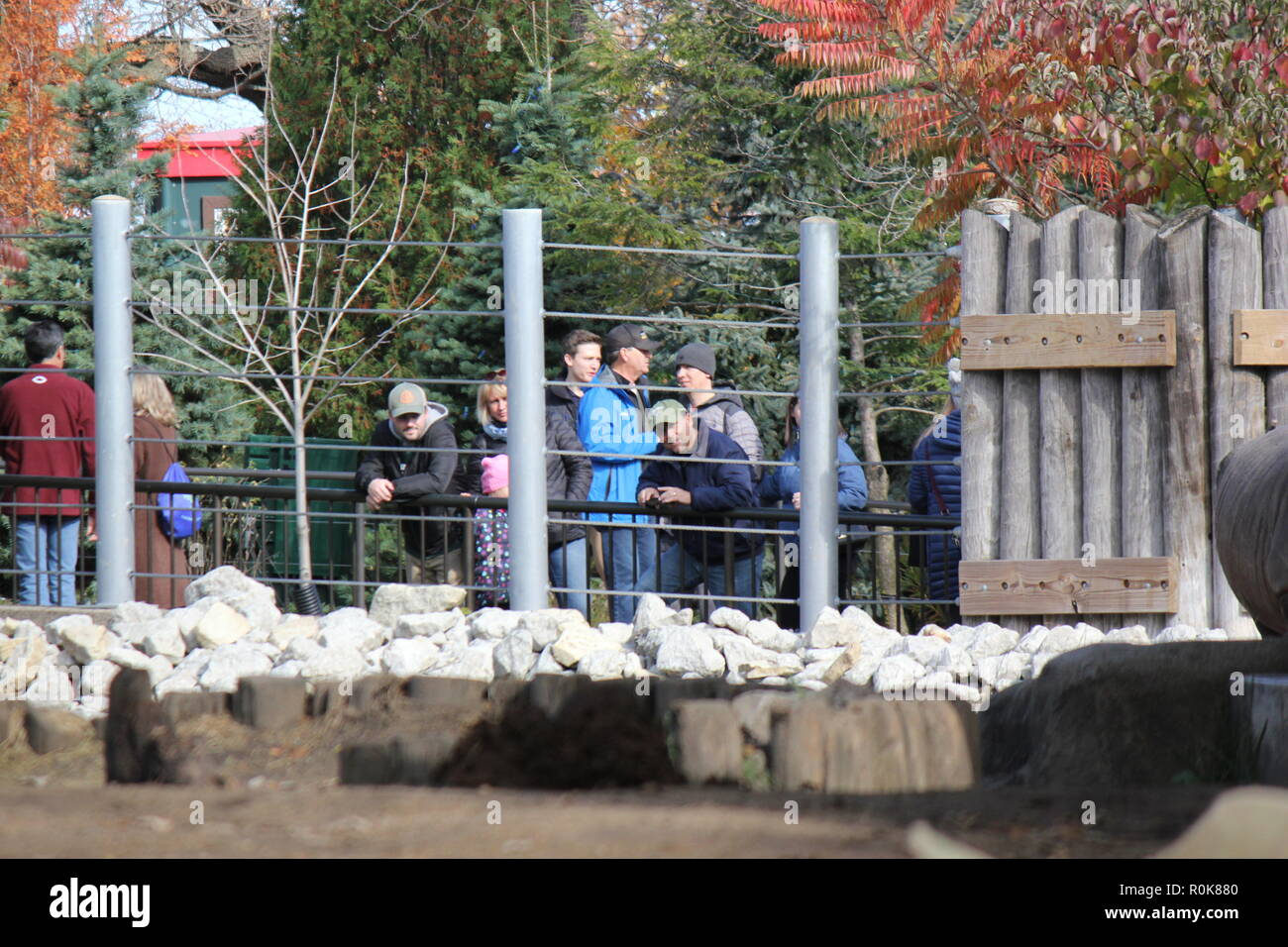 People watching the zoo animals thru the steel guard fence. raw imagery #rawimagery - Stock Image