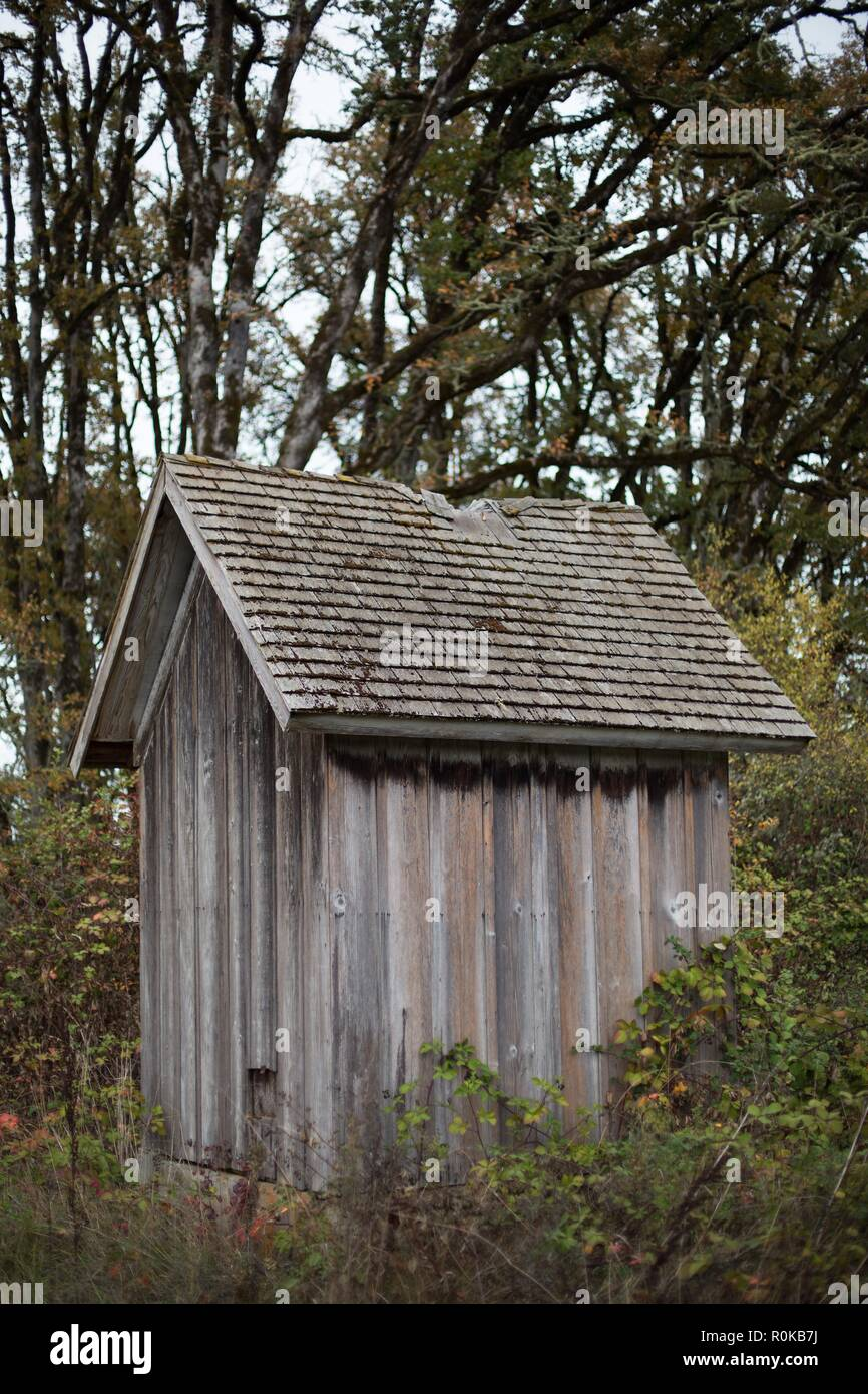 An old wooden shed at William Finley Wildlife Refuge near Monroe, OR, USA. - Stock Image