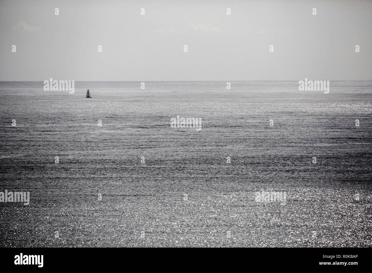 lonely Sailboat crossing the Gulf, New Zealand - Stock Image