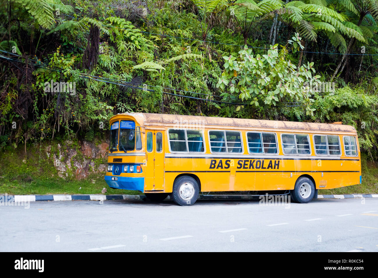 Beautiful landscape with yellow school bus taken in Tanah Rata in Cameron Highlands mountains in national park in Malaysia. Trasport in south east Asi Stock Photo