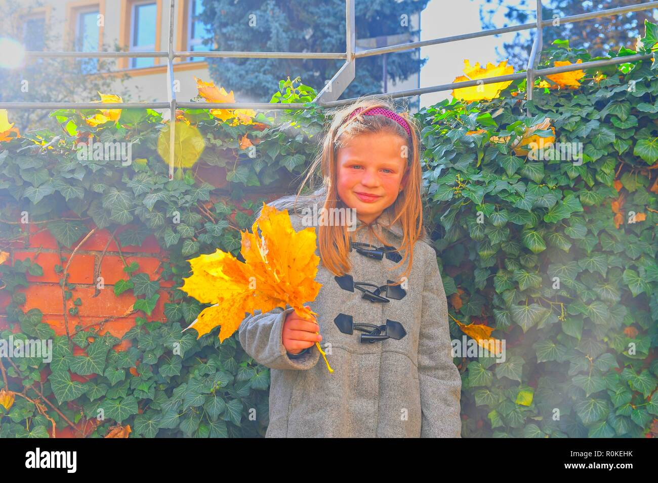 Little girl wearing retro coat and standing in front of brick wall in autumn. Ivy wall in autumn. Autumn concept. Lens flare - Stock Image