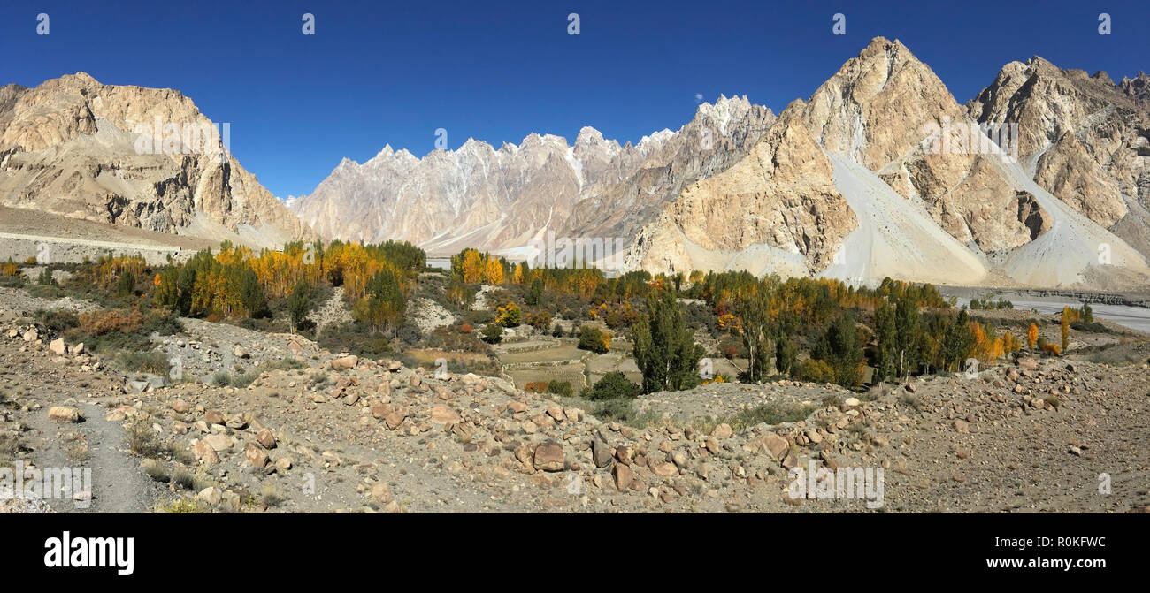Autumn in Passu show clear blue sky and yellow leaves poplar trees surrounded by mountains of Karakoram range. Hunza, Gilgit-Baltistan, Pakistan.adven - Stock Image