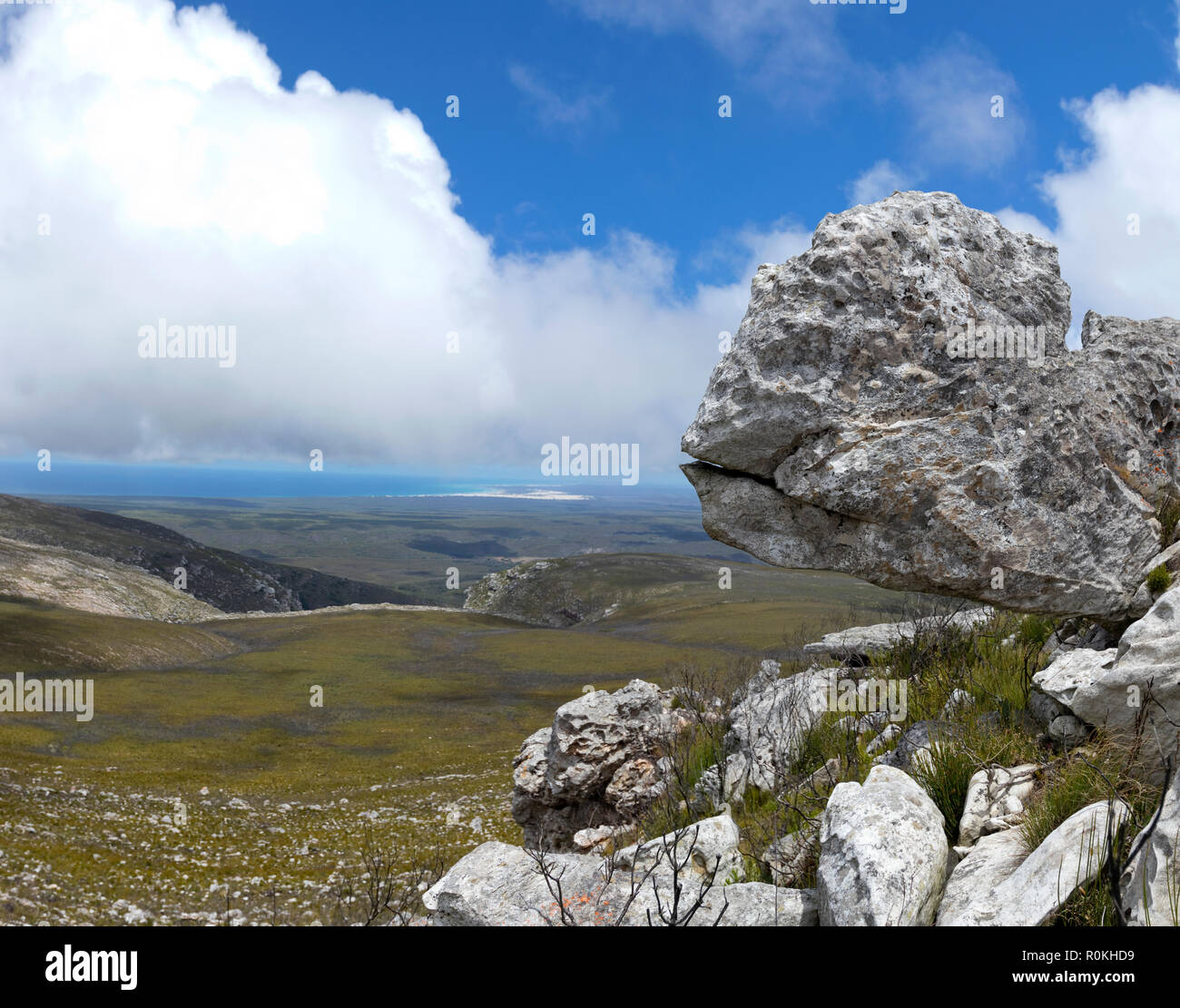 Landscape from the De Hoop Nature Reserve - Stock Image
