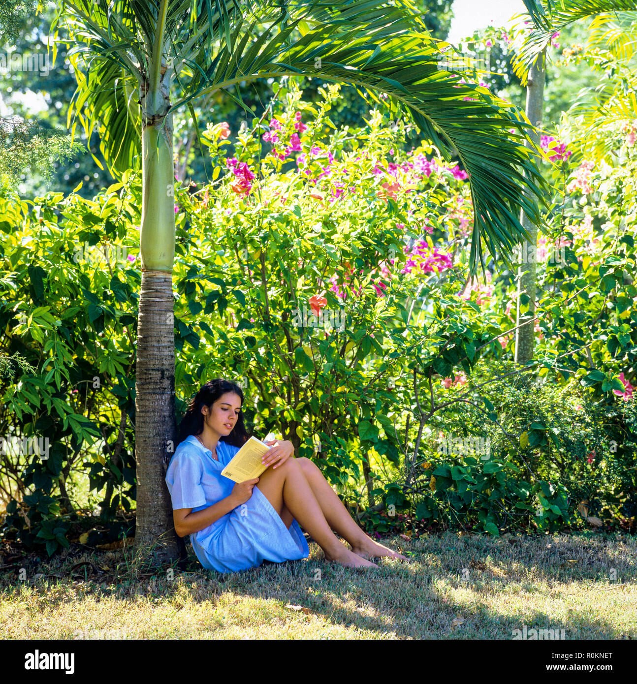 Young woman sitting in tropical garden and reading a book, Guadeloupe, French West Indies, - Stock Image