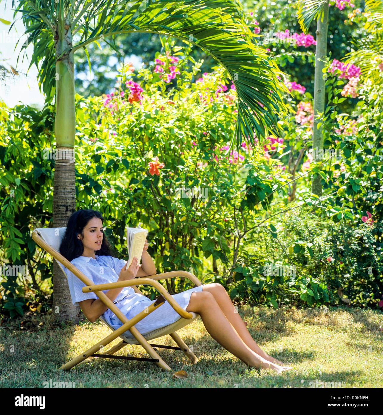 Young woman sitting in deck chair and reading a book, tropical garden, Guadeloupe, French West Indies, - Stock Image